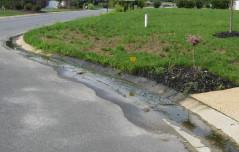 Irrigation_leak